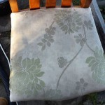 before - upholstry cleaing