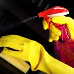 New - Professional Oven Cleaning