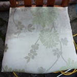 during - upholstry cleaning